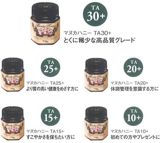 taste_5grade